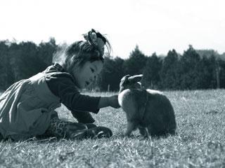 動物をかわいがる3歳の女の子