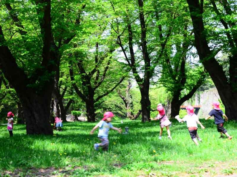 公園で元気に遊ぶ幼稚園の子供たち