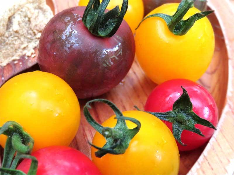 赤と黄色と紫のミニトマト