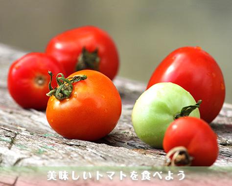 トマトの見分け方指南!スーパーでハズレを引かない選び方