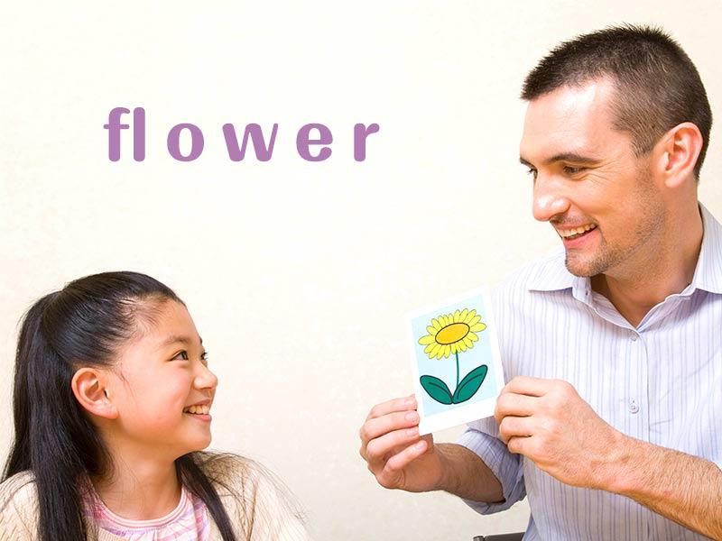 外国人から花のカードを使って英語を教えてもらっている女の子