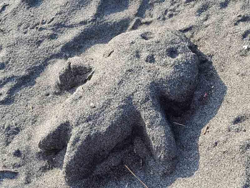 砂で作った人形