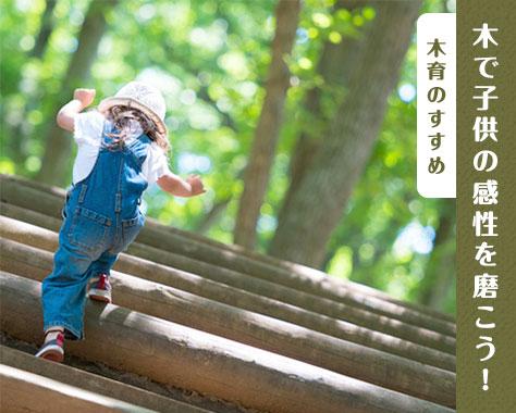 木育で豊かな心を育もう~感性を磨くおすすめおもちゃ3選