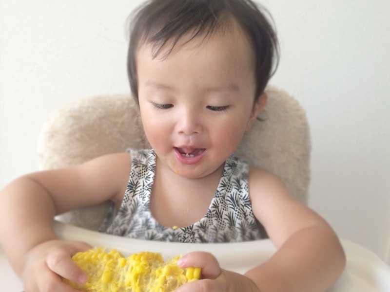 トウモロコシ持って食べる一歳児